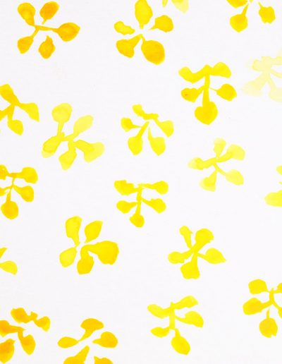 dessin à l'aquarelle, doodling pattern floral
